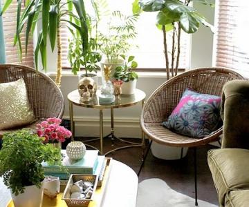 Mang cây xanh và không khí trong lành cho ngôi nhà của bạn .
