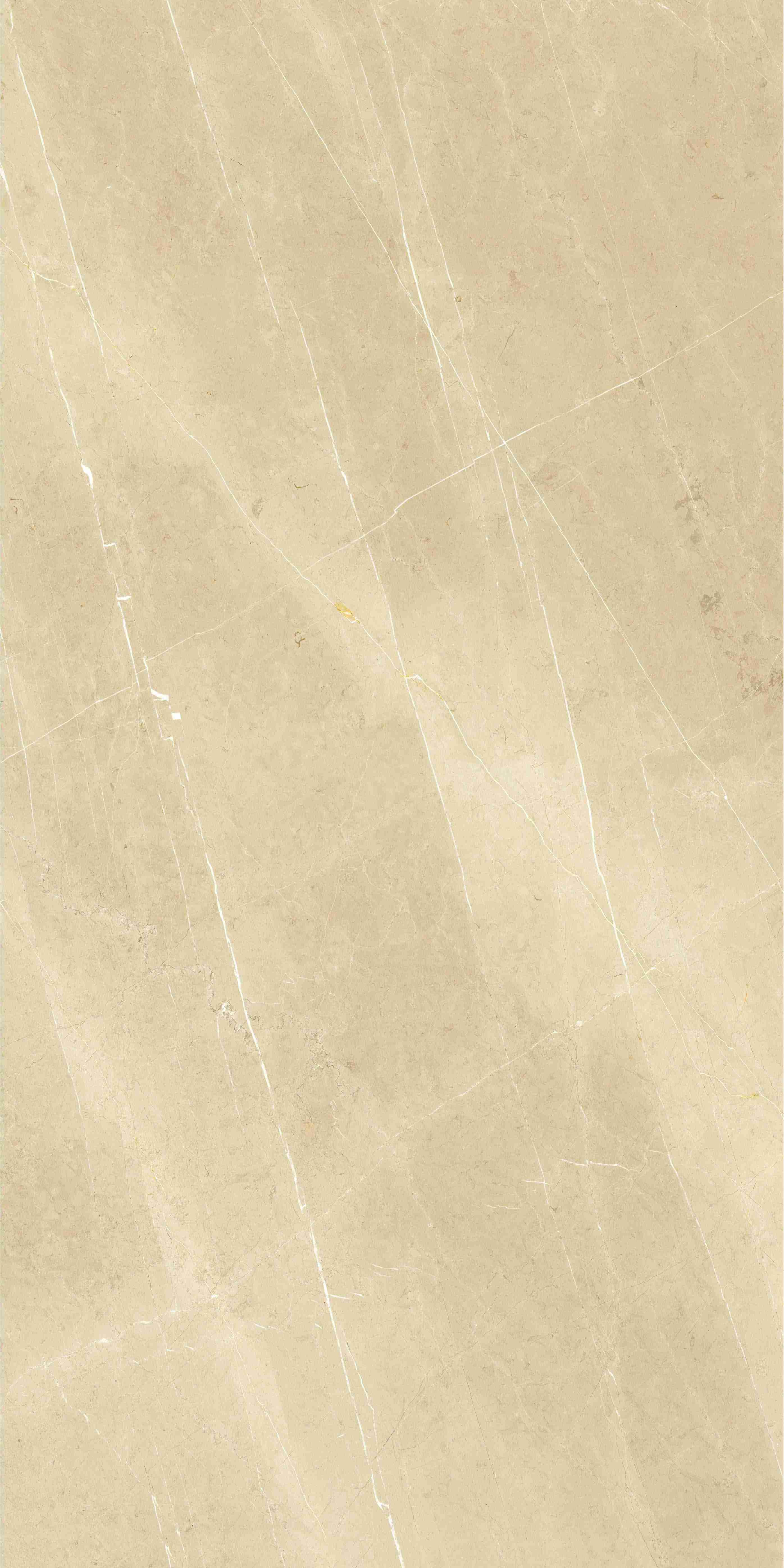 Gạch khổng lồ 90x180cm ( Tel 0938 94 04 04 )47/51