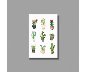 Tranh Cactus watercolor
